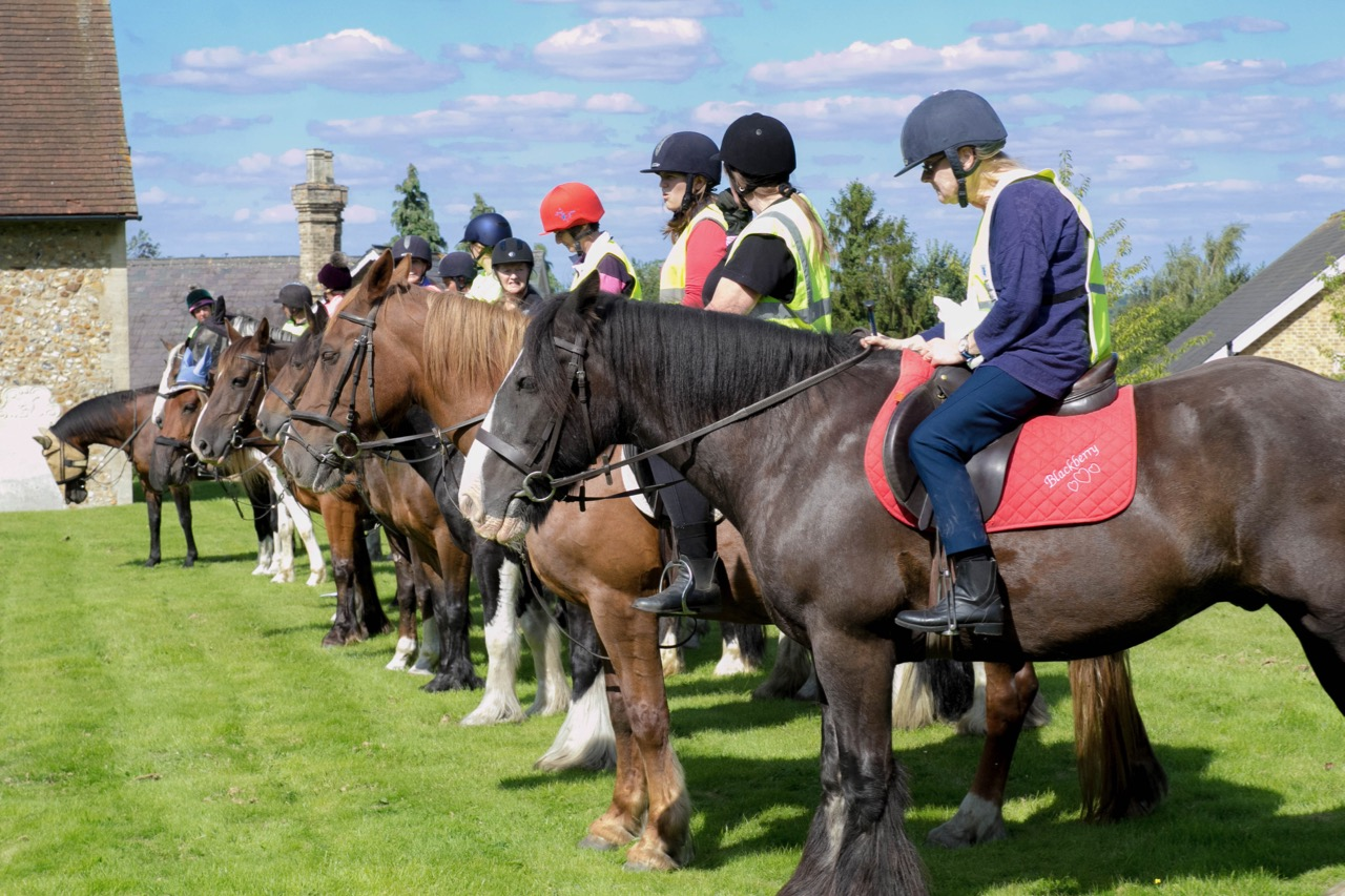 IMG 9614 Horse Blessing Service  Horse line up  13th August 2017-9614