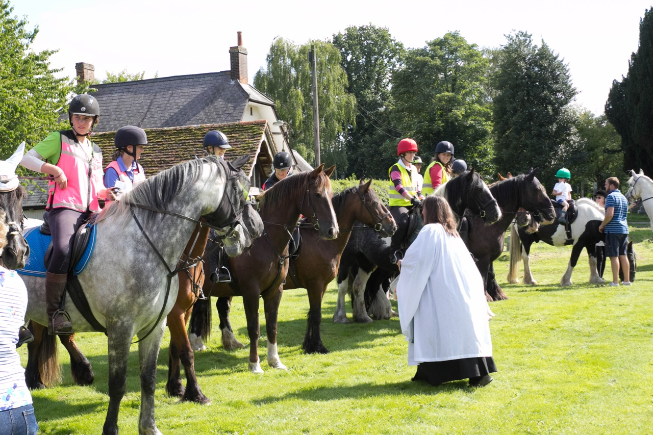IMG 9623 Horse Blessing Service  Ginni Feeding horses 4  13th August 2017-9623