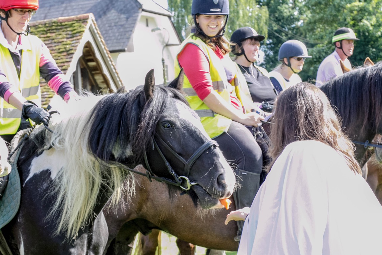 IMG 9623 Horse Blessing Service  Ginni Feeding horses 5  13th August 2017-9627