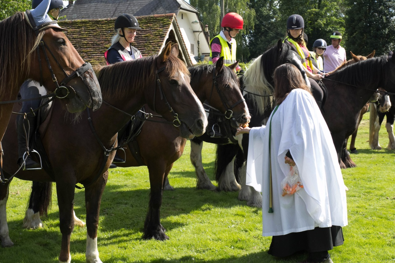 IMG 9626 Horse Blessing Service  Ginni Feeding horses 3  13th August 2017-9626