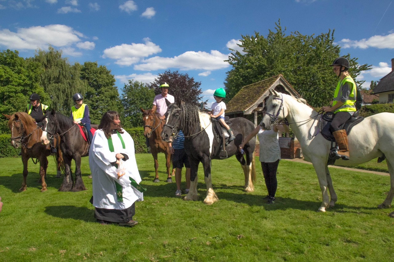 IMG 9637 Horse Blessing Service  Ginni feeding horses 1  13th August 2017-9637