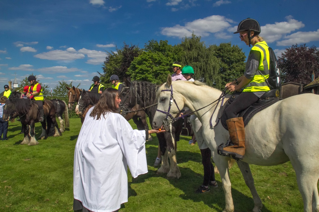 IMG 9638 Horse Blessing Service  Ginni feeding horses 2  13th August 2017-9638